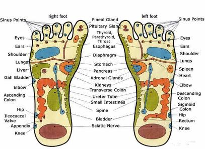Foot_reflexology_chart582x425
