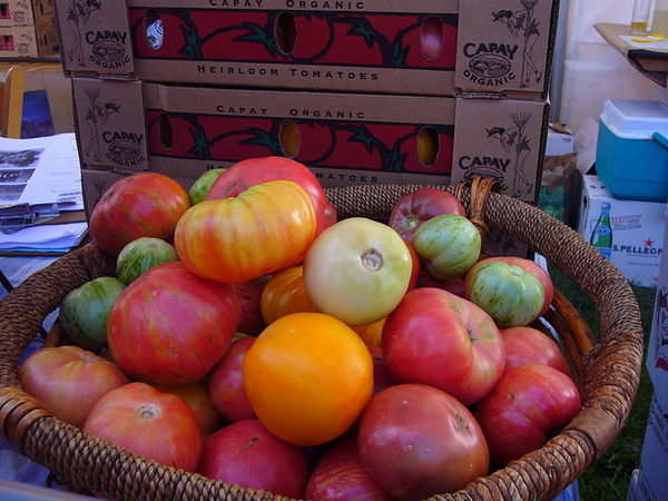 800pxcapay_heirloom_tomatoes_at_slo